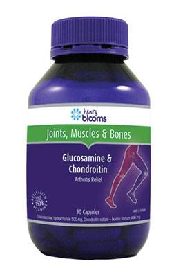 Henry Blooms Glucosamine & Chondroitin 90 Capsules